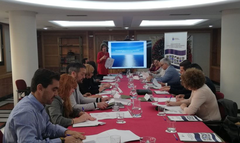 Implementation of working groups to improve the professional skills of the Blue Economy – Naval Repair and Offshore Wind Subsectors